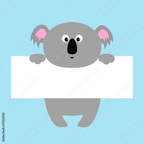 Funny koala hanging on paper board template. Kawaii animal body ...