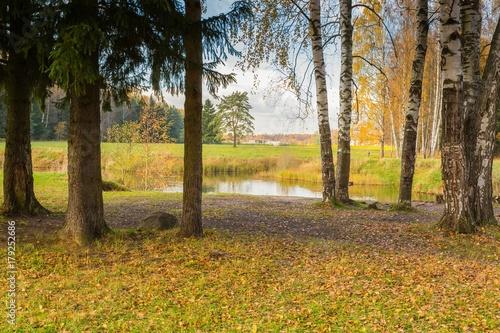 Foto op Canvas Herfst Bright autumn landscape