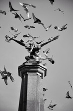 Pigeons On The Monument