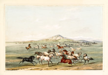 Old Watercolor Illustration Of Wild Horses Running And Playing On A Vast Plain. By G. Catlin, Catlin's North American Indian Portfolio, Ackerman, New York, 1845
