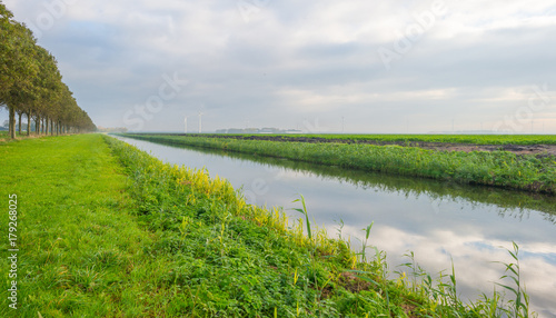 Clouds reflecting in a canal  through a field in sunlight at fall Fototapeta