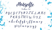 Handwritten Calligraphy Font. ...