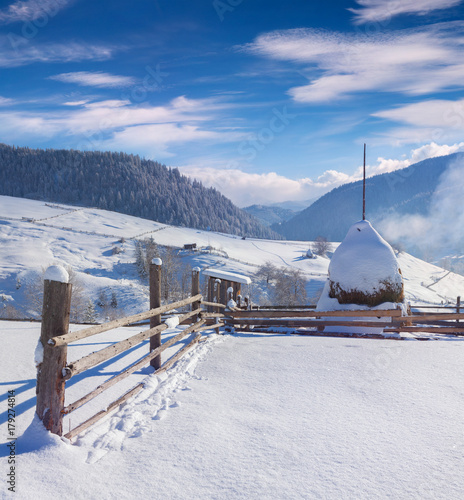 Fotografia, Obraz  Bright winter view in Carpathian village