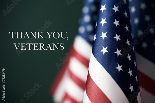 Fotografía  text thank you veterans and american flags