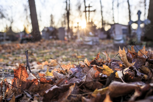 Photo sur Toile Cimetiere Dry fallen leaves are gathered in a pile in the cemetery, against the background of tombstones and crosses in the sun, in the autumn evening.
