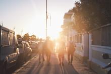 Friends Walking Through The St...