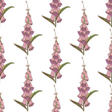 Colored Foxglove Seamless Pattern. Hand Drawn Graphic Background. Vector Illustration Of Medicinal Plant