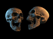 Human Skull On Rich Colors. The Concept Of Death, Horror. A Symbol Of Spooky Halloween. 3d Rendering Illustration.
