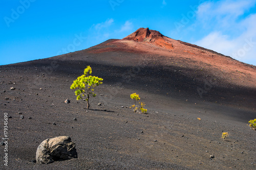 Tuinposter Canarische Eilanden View of the Arenas Negras near volcano Teide, Teide National Park, Tenerife, Canary Islands, Spain
