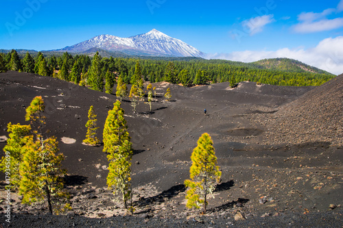 Foto op Plexiglas Canarische Eilanden View of the volcano Teide near Arenas Negras. Grandeur nature and small man. Teide National Park, Tenerife, Canary Islands, Spain. Artistic picture. Beauty world.