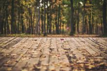 Wooden Floor Terrace Over Autumn Forest Background