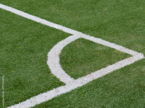 Zdjęcie XXL Sztuczna trawa jako Hinterdrund