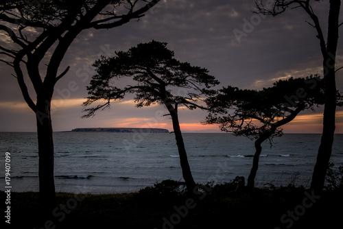 Fotografía  Gotland late evening 1