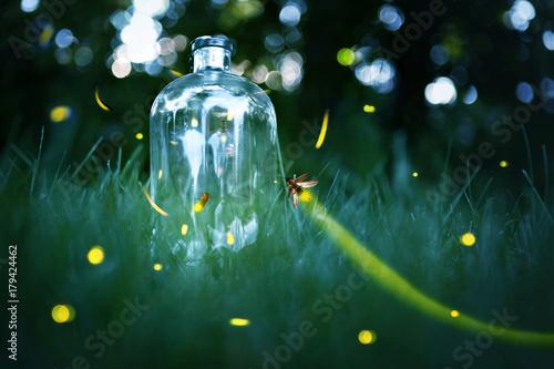 Slika na platnu Fireflies in a jar.