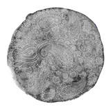 vector watercolor mandala with paisley ornament - 179426852