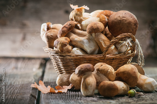 Ceps mushroom. Boletus closeup on wooden rustic table