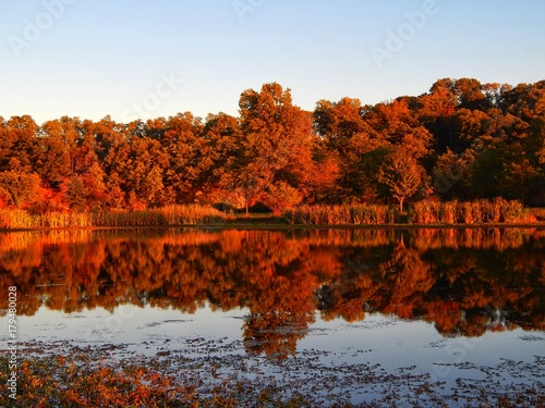 Keuken foto achterwand Rood traf. The Colorful Reflections Of The Autumn Trees Across The Water