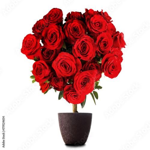 Zdjęcie XXL Róże w kształcie serca