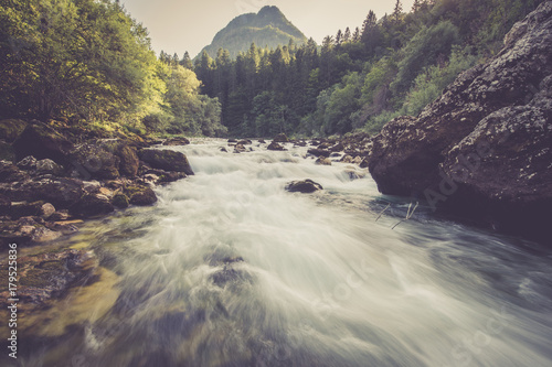 Photo sur Aluminium Riviere Mountain river in the green forest