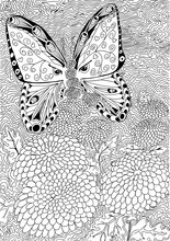 Butterfly On Flower. Hand Draw...