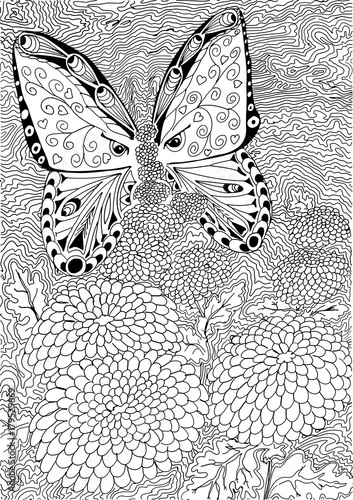 butterfly on flower hand drawn patterns for coloring freehand