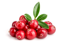 Cranberry With Leaf Isolated O...