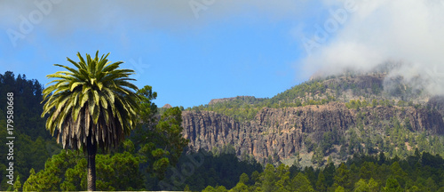 Tuinposter Canarische Eilanden View of mountain village Vilaflor with palm tree in the foreground,Tenerife,Canary Islands,Spain.
