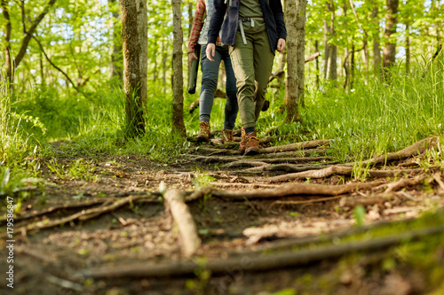 Fotografie, Obraz  Two women hiking along a forest footpath