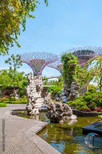 Papiers peints Jardin Jardins de Singapour