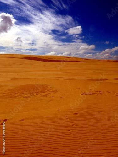Poster de jardin Desert de sable Sand dunes isolated on blue sky in National Park Poland