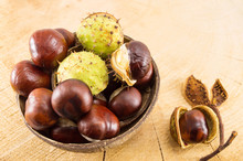 Wild Chestnuts With Shells In ...