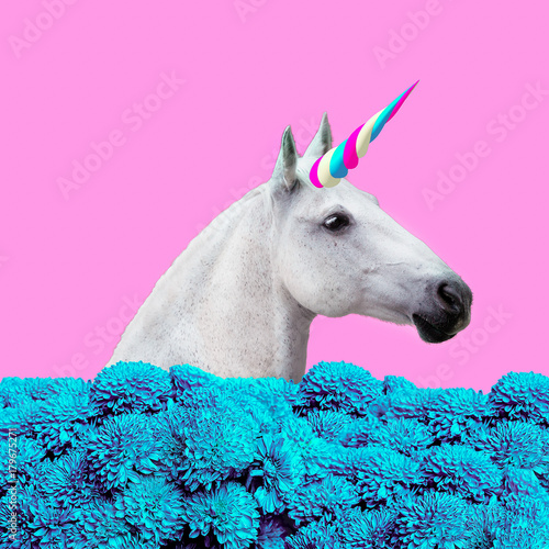 Photo  Unicorn collage with flowers