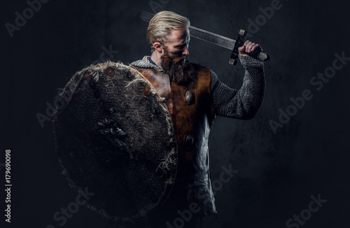 Viking dressed in Nordic armor holds a shield and silver sword. Canvas Print