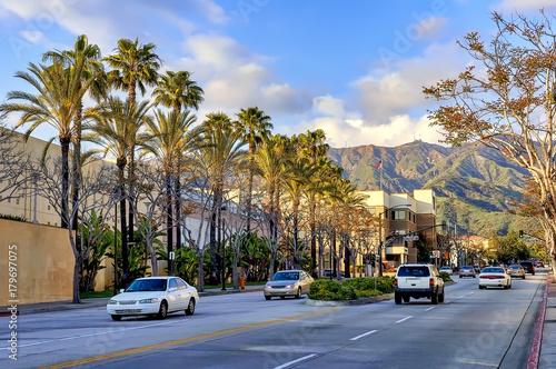 Photo Palm tree lined avenue in Burbank, California.