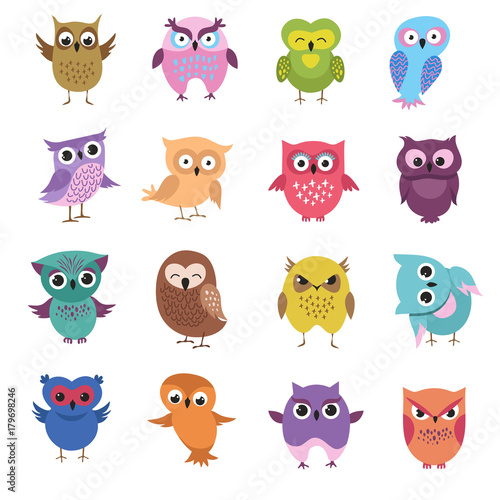 Fotografie, Tablou  Cute cartoon owl characters vector set