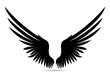 Black Wings. Vector illustration