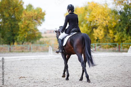 Foto auf Leinwand Reiten Young rider woman on bay horse performing advanced test on dressage competition. Rear view image of equestrian event background with copy space