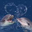 canvas print picture - Zwei Delphine im Wasser mit Wassertropfen in Herzform