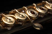 Details Of A Golden Flute Blac...