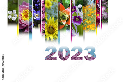 Fotografia  2023 with floral motif very cheerful and colorful
