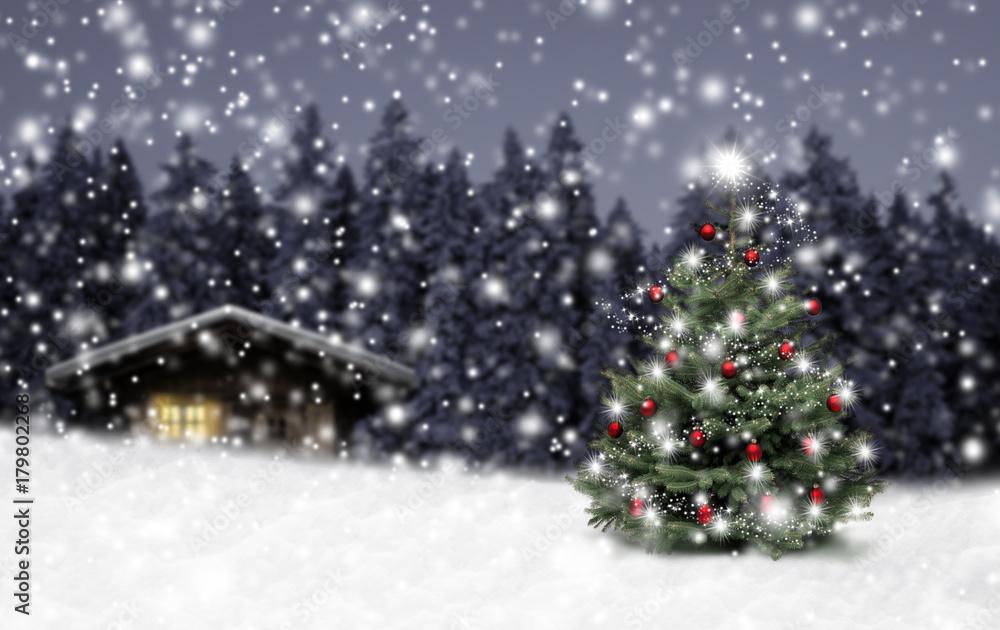 Valokuva  Schild Weihnachten im Winterwald