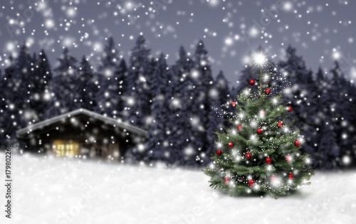 Fotografering  Schild Weihnachten im Winterwald