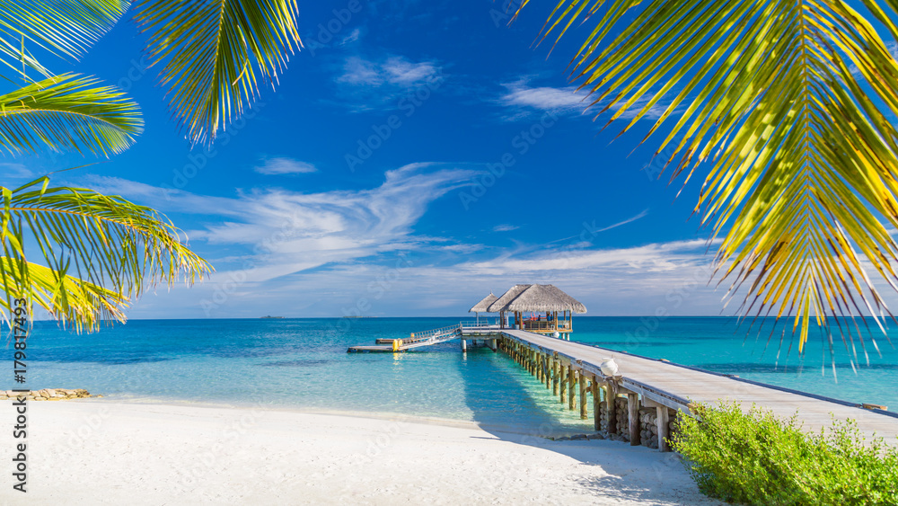 Fototapeta Perfect beach view. Summer holiday and vacation design. Inspirational tropical beach, palm trees and white sand. Tranquil scenery, relaxing beach, tropical landscape design. Moody landscape