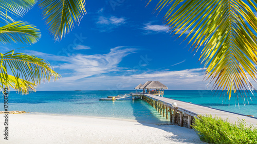 Spoed Fotobehang Strand Perfect beach view. Summer holiday and vacation design. Inspirational tropical beach, palm trees and white sand. Tranquil scenery, relaxing beach, tropical landscape design. Moody landscape