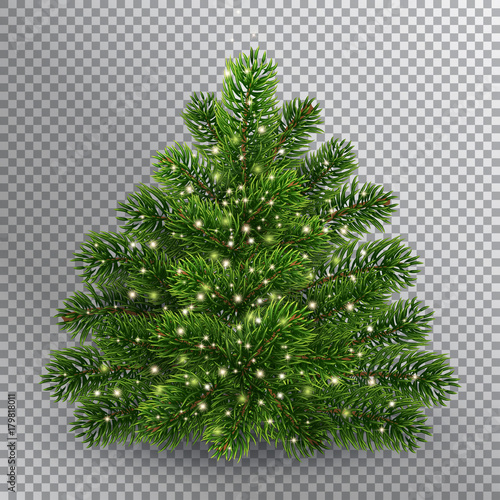 Christmas Tree Without Toys Realistic Illustration On Transparent