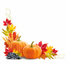 Thanksgiving Border With Pumpkins, Wheat Ears And Leaves On White. Vector Illustration.