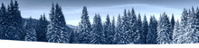 Winter Nature Snowy Landscape ...