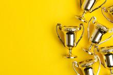 Gold Winners Achievement Troph...
