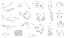 The Outlines Of Fish And Other...