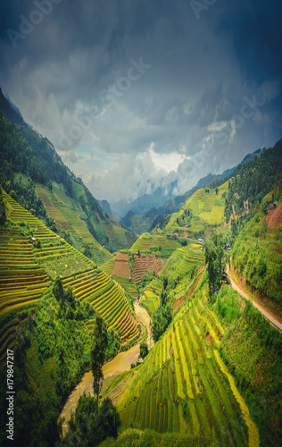 Foto auf Gartenposter Reisfelder Rice fields on terraced at dramatic sky background in Mu Cang Chai, YenBai, Vietnam.